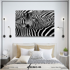 Zebra Kanvas Tablo